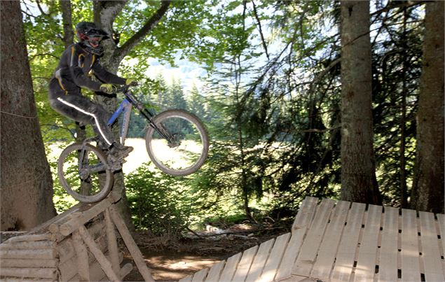 DEscente VTT Pleney Morzine - OT Morzine